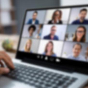 Online meeting of the project Partners